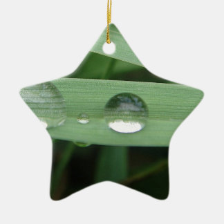 Water drop on blade of grass ceramic star decoration