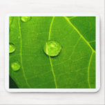 water drop on leaves mouse mat