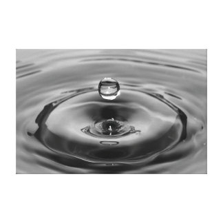 Water Drop Stretched Canvas Canvas Prints