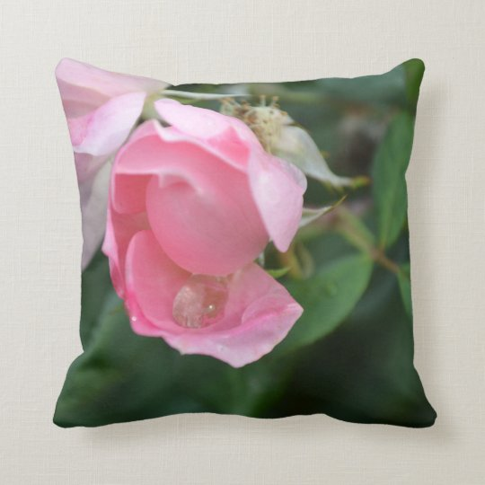 Water Drop & The Pink Rose Cushion