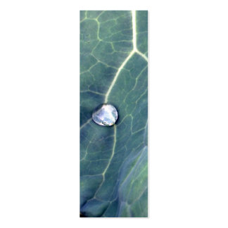 Water Droplet on a Cabbage Leaf Business Card Template