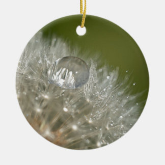 Water droplet on a dandelion christmas ornament