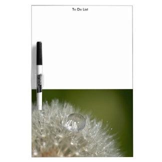 Water droplet on a dandelion dry erase board