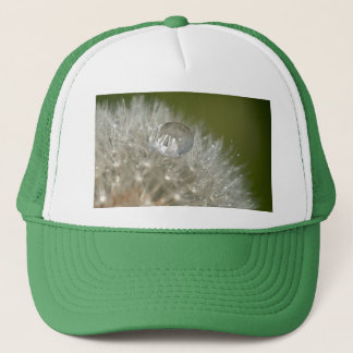 Water droplet on a dandelion trucker hat