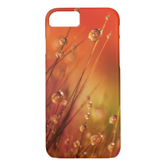 Water Drops on Blades of Grass Colorful Nature iPhone 7 Case