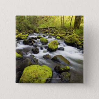 Water Flowing By Moss Covered Rocks In A Stream 15 Cm Square Badge