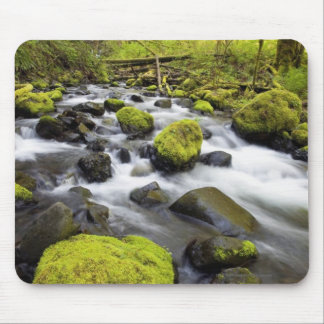 Water Flowing By Moss Covered Rocks In A Stream Mouse Pad