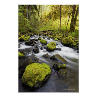 Water Flowing By Moss Covered Rocks In A Stream Poster