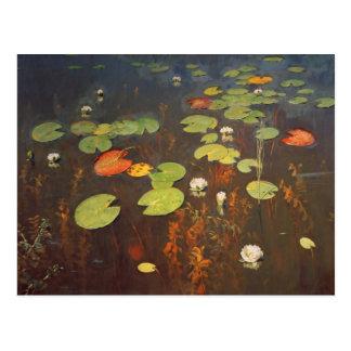 Water Lilies 1895 Postcard