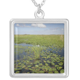 Water lilies and sawgrass in Florida everglades 2 Silver Plated Necklace