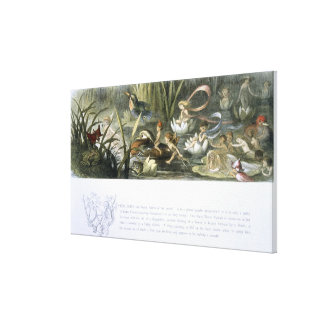 Water-Lilies and Water Fairies, illustration from Canvas Print