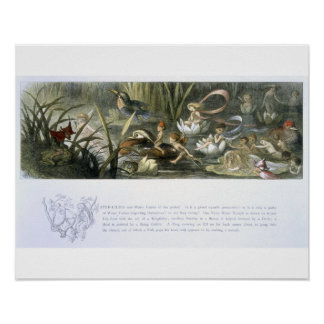 Water-Lilies and Water Fairies, illustration from Poster