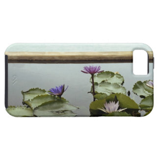 Water lilies in pond by ocean iPhone 5 cover