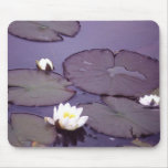 Water lilies mousepads