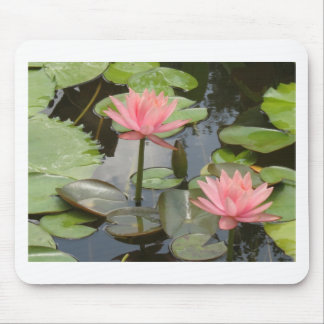 Water Lillies Mouse Pad