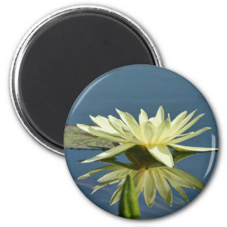 Water Lilly Fridge Magnets
