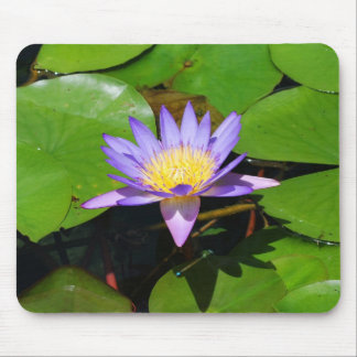 Water Lilly Mousepad