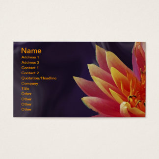 Water Lilly on Purple Background Business Card