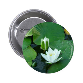 Water Lilly Pinback Button