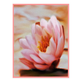 Water Lilly Postcards