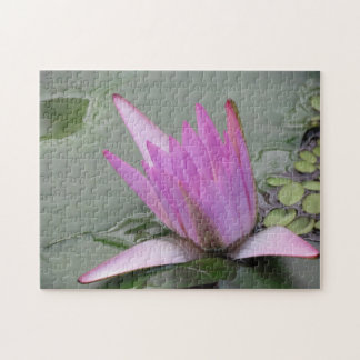 Water Lilly Jigsaw Puzzle
