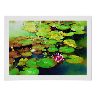Water Lily and Butterfly Poster