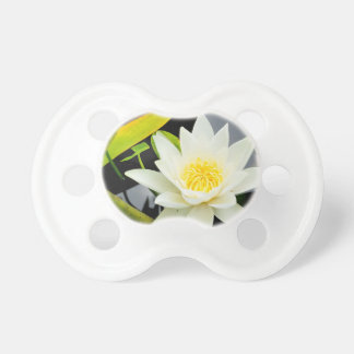 water lily baby pacifier