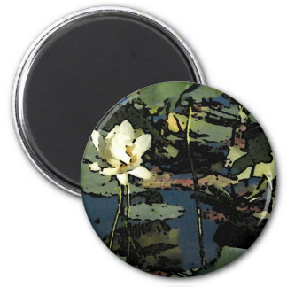 Water Lily Blossoms 6 Cm Round Magnet