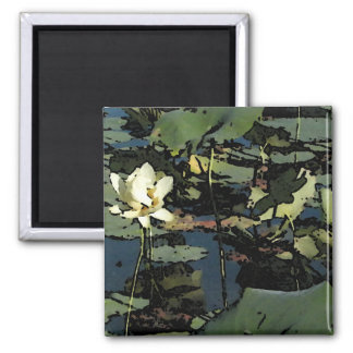 Water Lily Blossoms Square Magnet