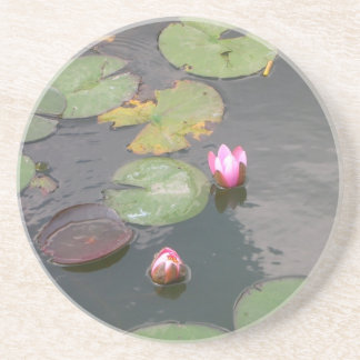 Water Lily Beverage Coaster