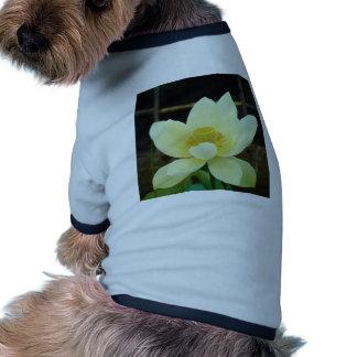 water lily dog shirt