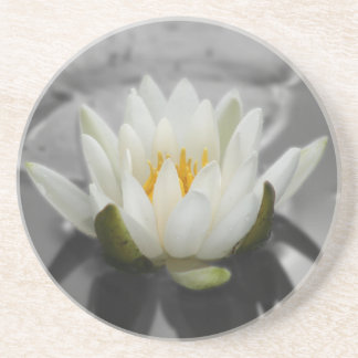 Water Lily Floral Coaster