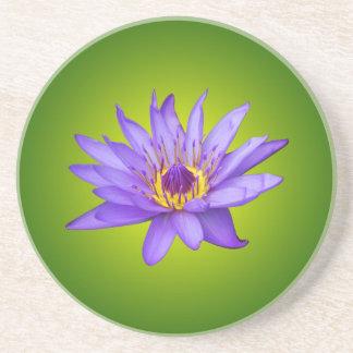 Water Lily Flower Pond Aquatic Purple Water Bloom Coaster