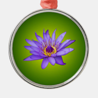 Water Lily Flower Pond Aquatic Purple Water Bloom Silver-Colored Round Decoration