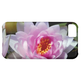 Water Lily iphone 5 Case