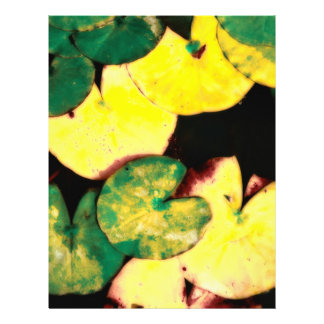 Water lily leaves full color flyer
