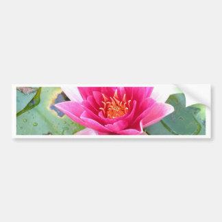 Water Lily Lotus Flower Bumper Sticker