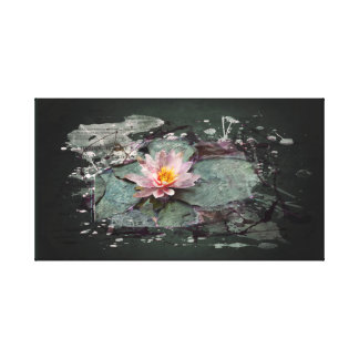 Water Lily, Lotus Flowers in pond, Art Painting Canvas Print