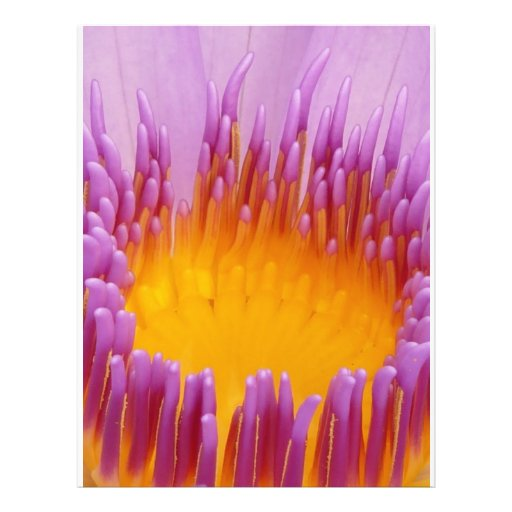 Water Lily Macro Personalized Flyer