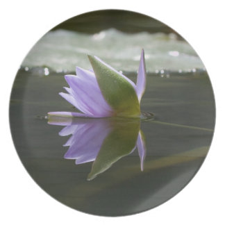 Water Lily Melamine Plate