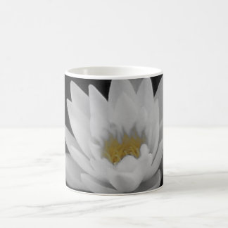 Water Lily mono and yellow Basic White Mug