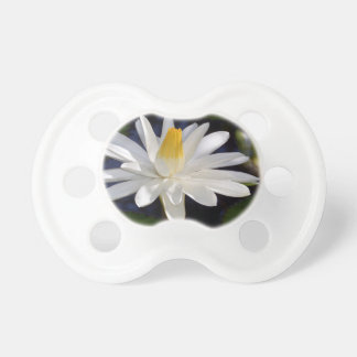 Water Lily Pacifiers