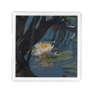 Water lily perfume/soap tray