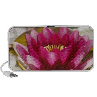 Water lily travelling speaker