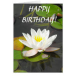 Water Lily with foliage and coin Greeting Card