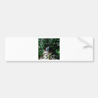 Water Lion Witch And The Wildnerness Bumper Sticker