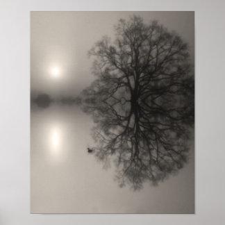 Water Oak in Morning Fog Photo Print