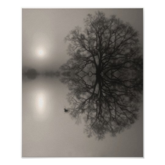 Water Oak in Morning Fog Photo Print