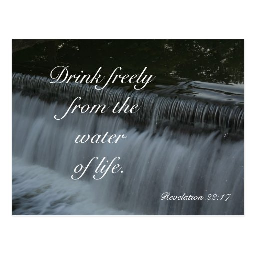 Water of Life Post Card