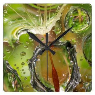 Water on dandelion seed, CA Clocks